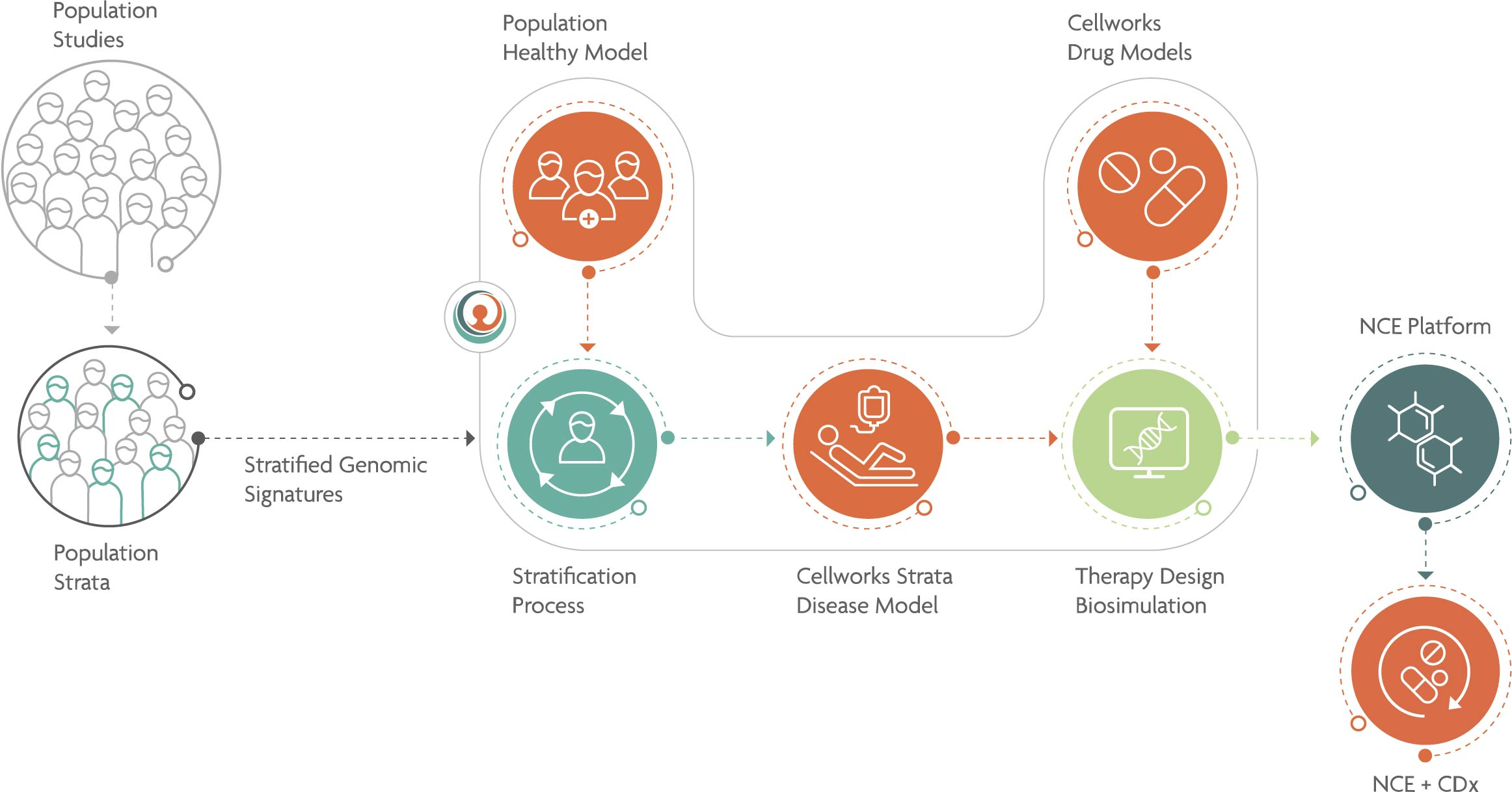 Cellwork Precision Medicine Workflow